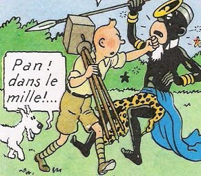 Tintin in the Congo fight